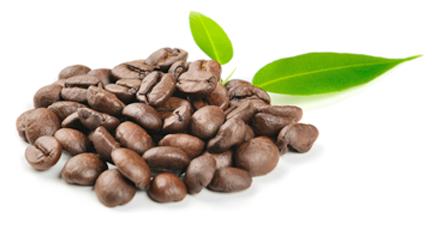 grans-cafe